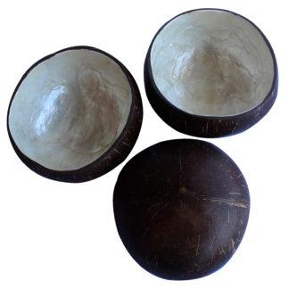 Calebasse noix de coco